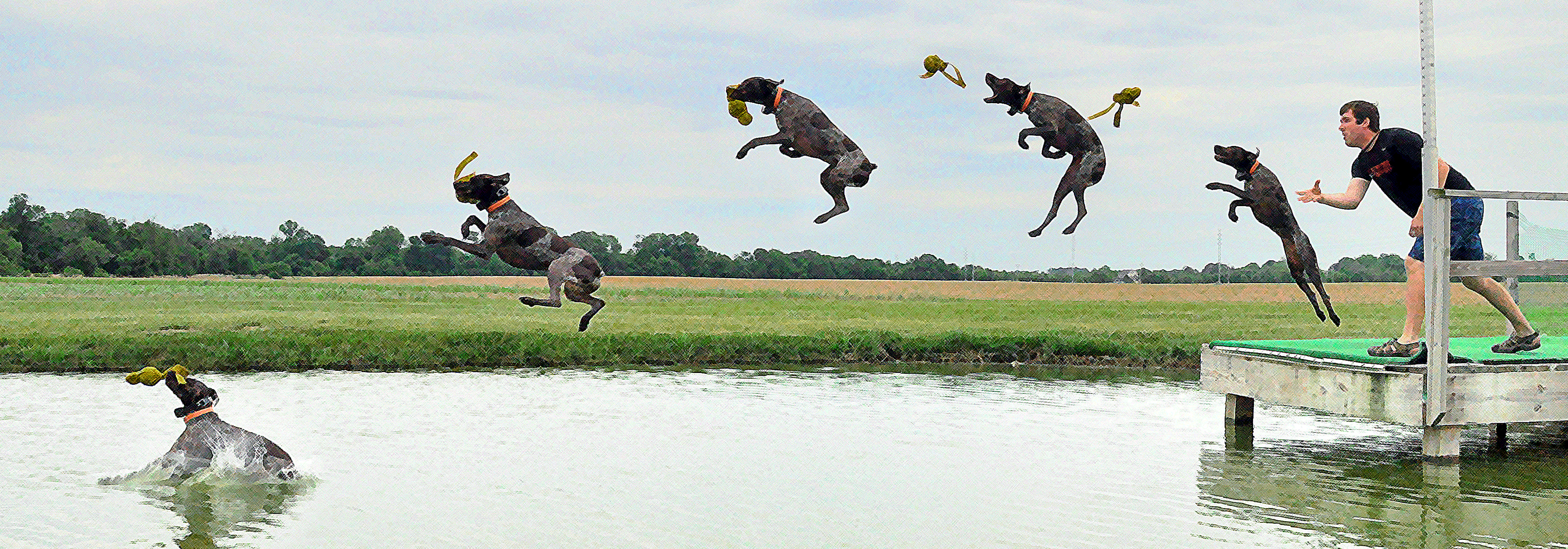 Addicted To Dockdogs The Little Gsp
