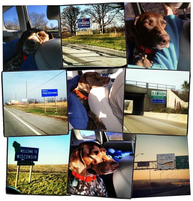 Road Trip Montage!