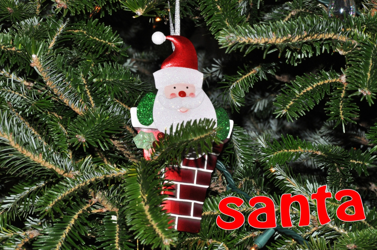 (5) Santa: Just an ornament; I haven't seen Santa yet this year