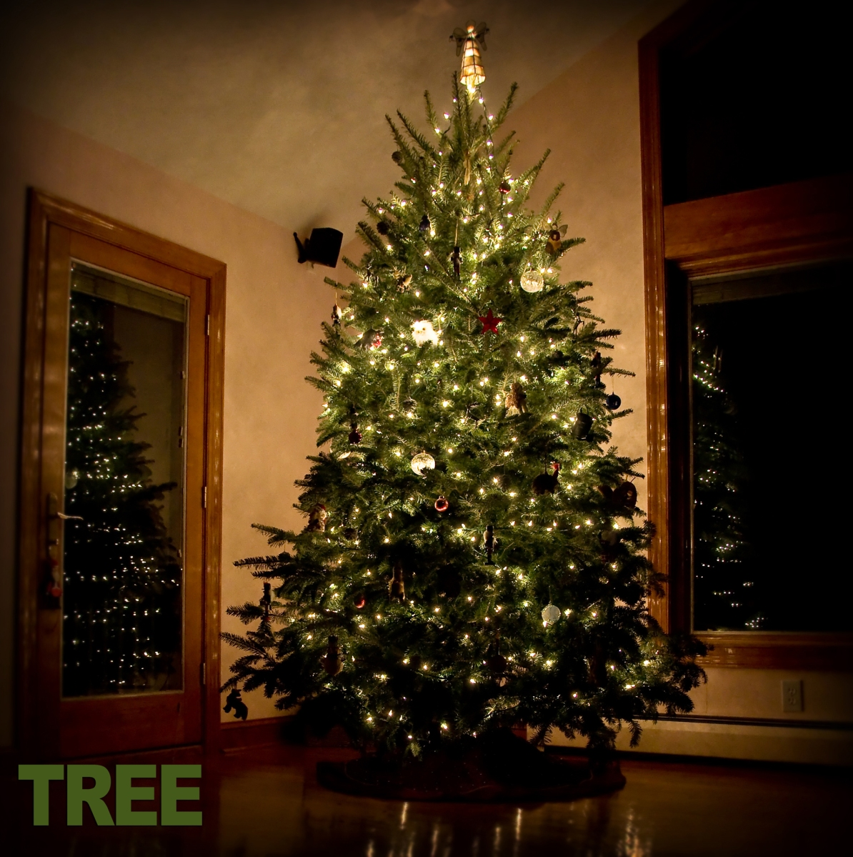 8 - Tree