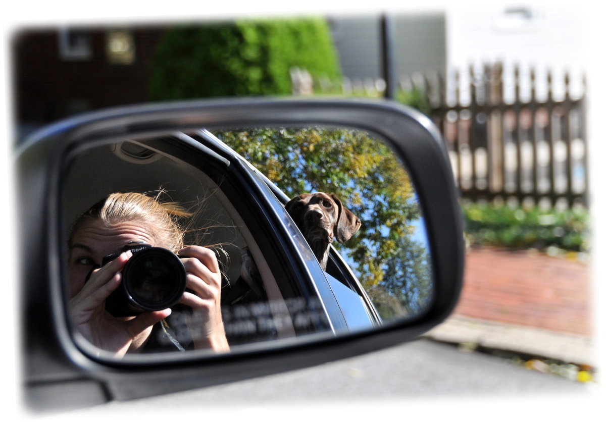 """weekly photo contest - """"reflection"""""""