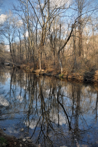 Reflections on Ridley Creek
