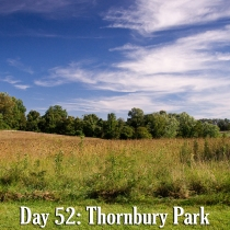 Thornbury Park in September