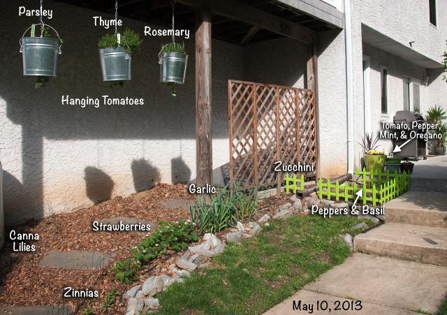 Garden (5-10-13)