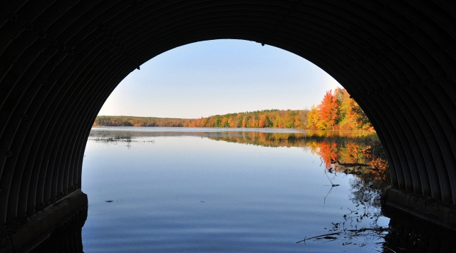 A different POV- Promised Land Lake thru the Conservation Island Bridge