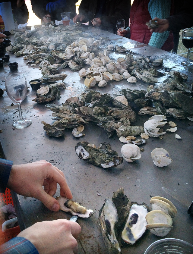 31 Shucking Oysters