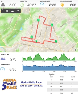 Runkeeper Stats - Media 5 Mile