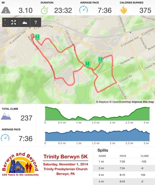 Trinity Runkeeper Stats