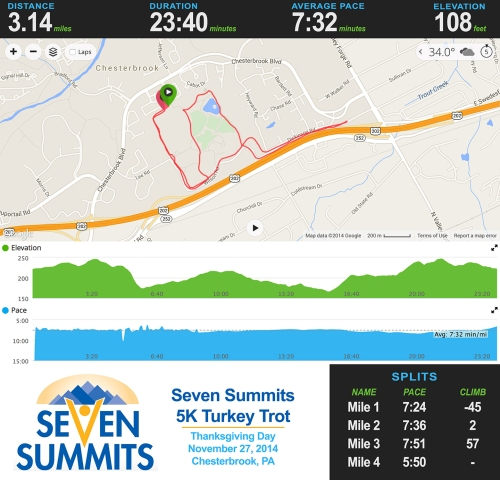 Turkey Trot Stats
