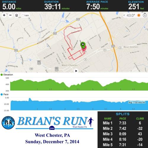 Brian's Run Stats-