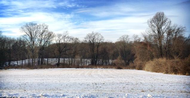 January at RCSP