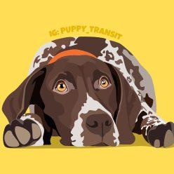 @Puppy_Transit's portrait
