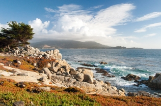 Pebble Beach View