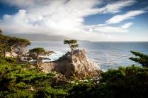 Lone Cypress, Pebble Beach, CA (October)