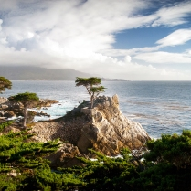 Lone Cypress, Pebble Beach, CA (October)