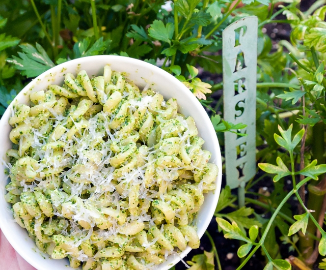 1504-parsley-pesto-pasta