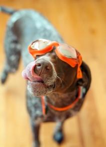 OK guys, I'm ready to swim!