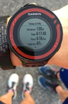 """My """"real"""" mile time, according to Garmin"""