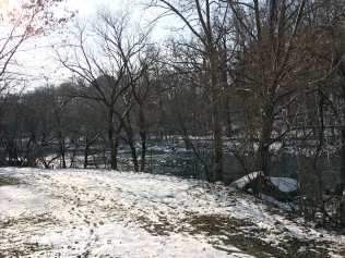 Snowy Brandywine