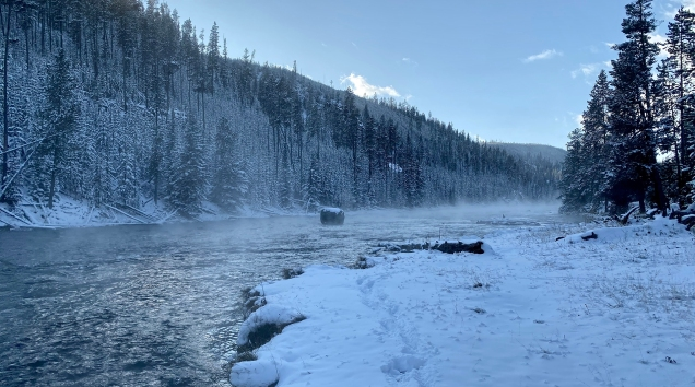 Steamy Firehole River