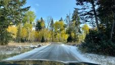 Wilson-Moose Road
