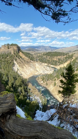 Yellowstone River at Tower
